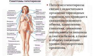 Месячные и щитовидная железа