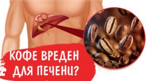 Влияние на печень семечек с кофе одновременно