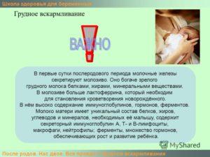 Месячные после родов на ГВ