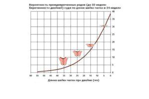 Длина шейки матки при многоплодной беременности
