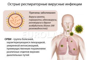 E. coli вызывает восплаение л/узлов, ощущение простуды, поражение суставов?