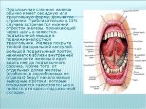 Воспаление подъязычного мясца, помощь