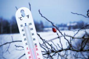 Высокая температура более 10дней