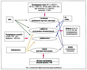 Мутация генов тромбофилии