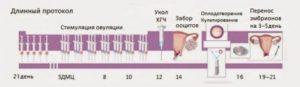 В протокол ЭКО с температурой