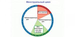 Вероятность беременности с 10-17 день цикла