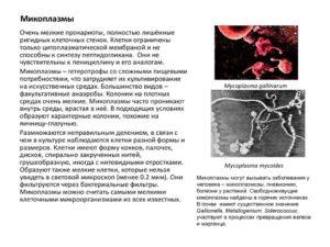 Микоплазма гениталиум и хоминис, разница в результатах