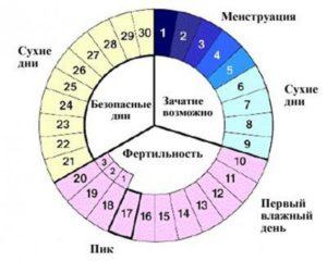 Вероятность беременности в последний день цикла