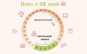 Возможна ли беременность на 5 день цикла