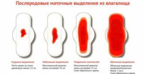Месячные после родов. Задержка вторых месячных