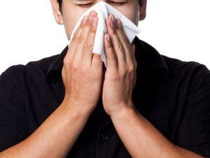 В носу сухость и чихание