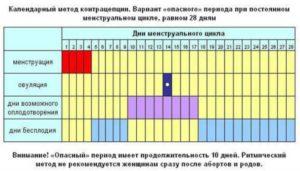 Вероятность беременности на 6 день цикла