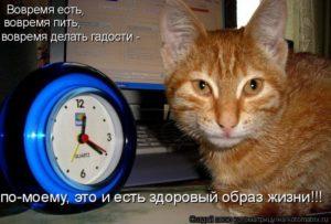 Вовремя не приняла