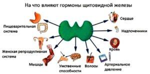 Влияет ли ДИПРОСПАН на гормоны щитовидной железы