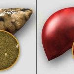 Через сколько после окончания приема денола можно начать кормить грудью
