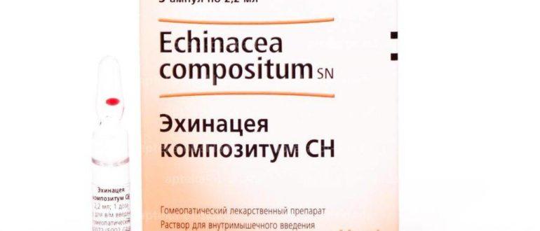 Эхинацея композитум уколы для профилактики