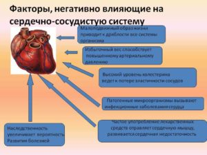 Влияют ли антибиотики на сердце, чем лечить сердце?