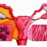 Можно ли принимать Wellness Пэк при кормлении грудью?