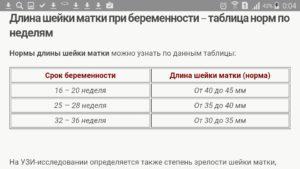 Длина шейки матки на 17 неделе