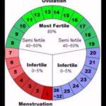 Выделения при беременности введении праджисана 100