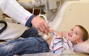 УЗИ брюшной полости, ребенок 2,5 года
