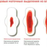 Вильпрафен и планирование беременности
