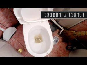 Месячные при походе в туалет
