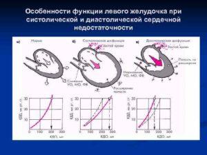 Что значит систолическая и диастолическая функция левого желудочка у подростка?